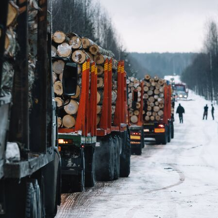 Loaded long vehicles on winter road among forest