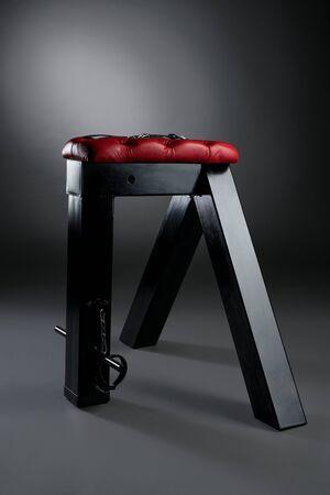 Bdsm furniture view Reklamní fotografie
