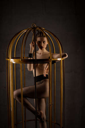 Sexy tied slave woman stand in BDSM cage