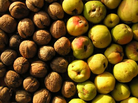 quinces: walnuts & quinces