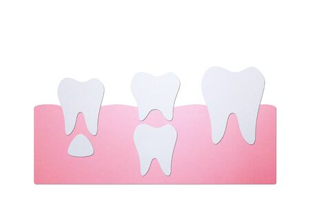 permanent tooth located below primary tooth - dental cartoon paper cut style cute character for design