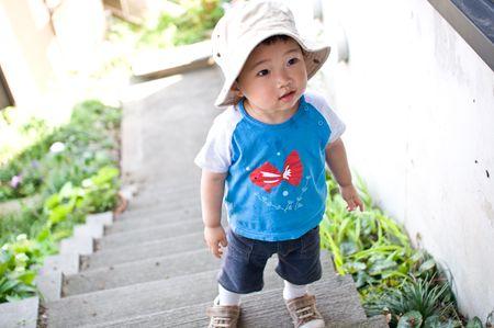 Goldfish Stock Photo - 7532589