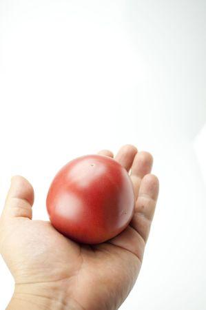 roundness: Tomato