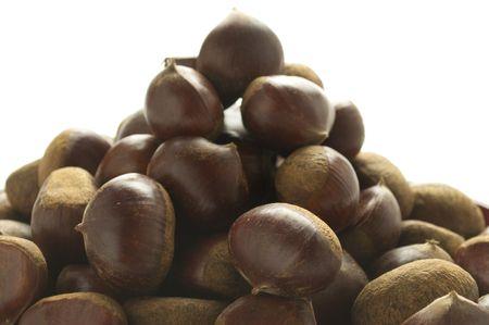 Chestnut Stock Photo - 8099725