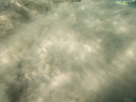 fond marin: fond de sable