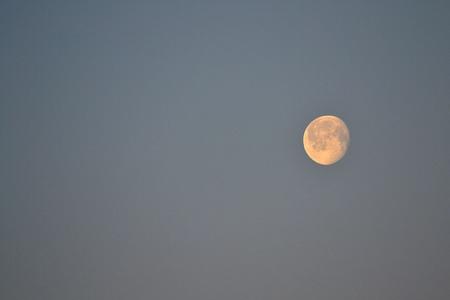daylight: Beautiful moon in daylight Stock Photo