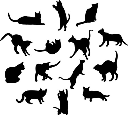 Cats Stock Vector - 2945409