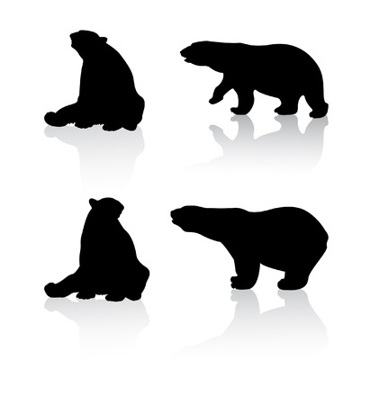 bear silhouette: Bears Illustration