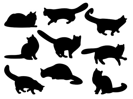 meow: Cats silhouettes