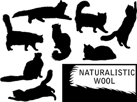 furry tail: Set of detailed cats silhouettes Illustration