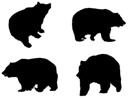 oso negro: Las siluetas de oso Vectores