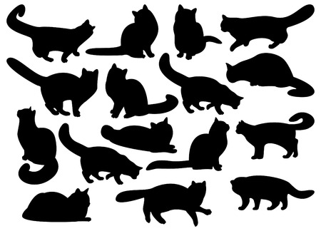 cat tail: Big set of cats silhouettes Illustration