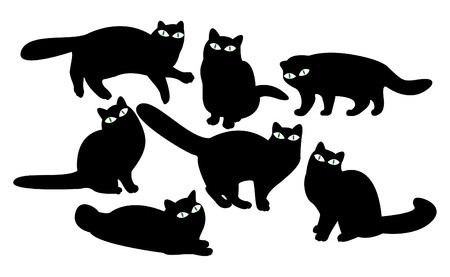 Cats with eyes Vector
