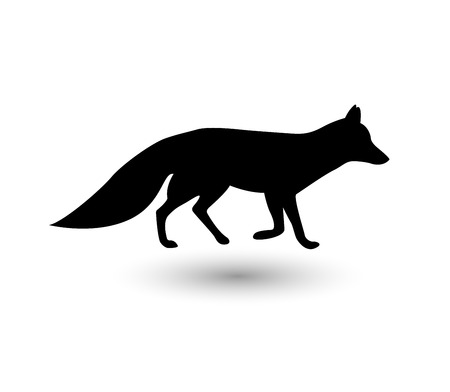 black and white wolf: Silhouette of fox