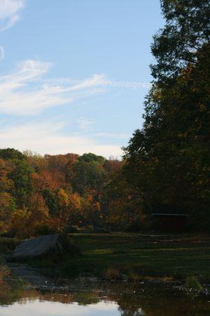 Fall at its finest Standard-Bild