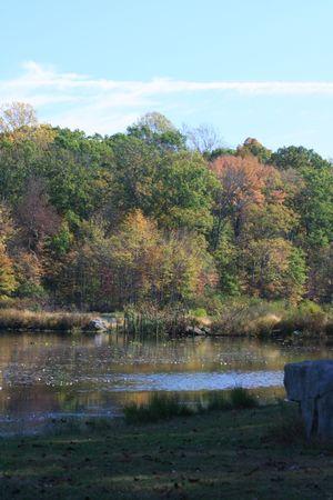 Peaceful feelings taken in Towhe Indian Creek