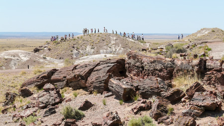 petrified: Petrified Forest, AZ, USA - May 20, 2008: A group of people walking in Petrified Forest National Park, at front fossiles petrified wood.