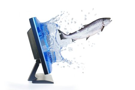 televisor: jumping out from monitor salmon Stock Photo