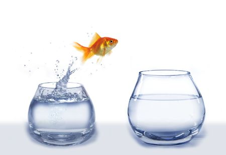 gold jump over from aquarium to aquarium fish Stock Photo - 5461774