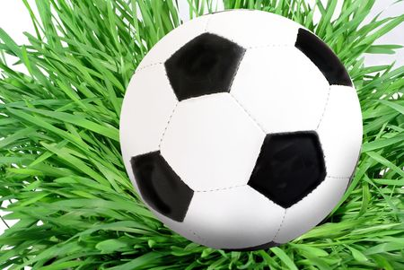 blackly: blackly white foot ball on grass