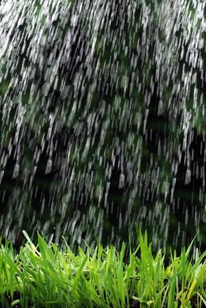 raining on grass rain