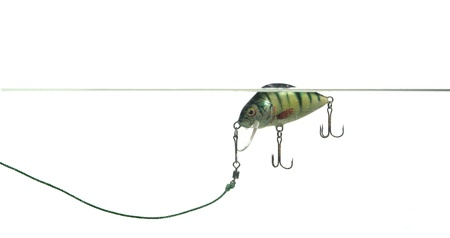 rapala:  wobbler for fishing on white background Stock Photo
