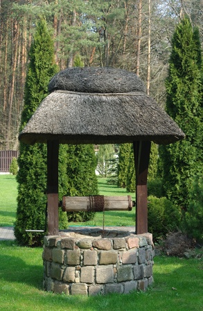old well on a forest background