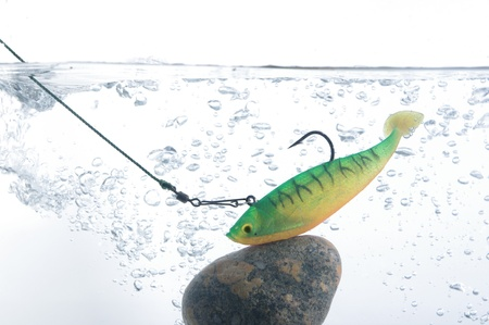 decoy: artificial angling bait on stone in water