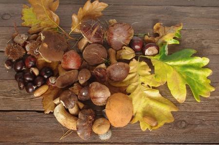 fruit of autumn on old board photo