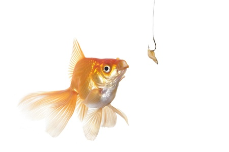 color image fish hook: gold fish and worm  on a white background