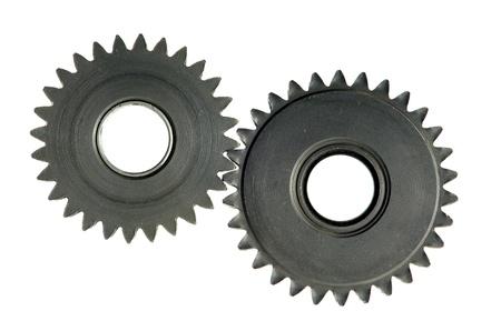 rueda dentada: mecanismo de ruedas dentadas en fondo blanco
