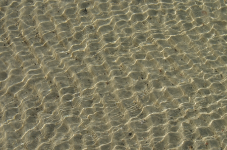bottom of sea with sand photo