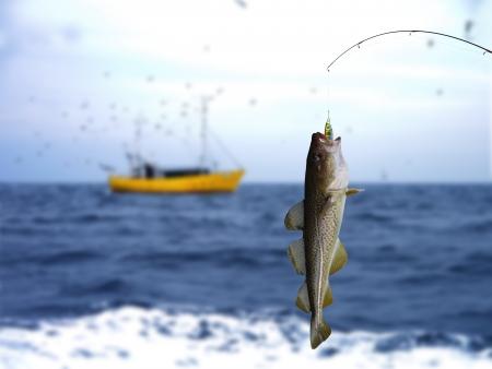 codfish:  cod on fishing-rod on background of sea