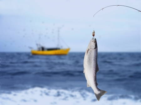 salmon on fishing-rod on background of sea