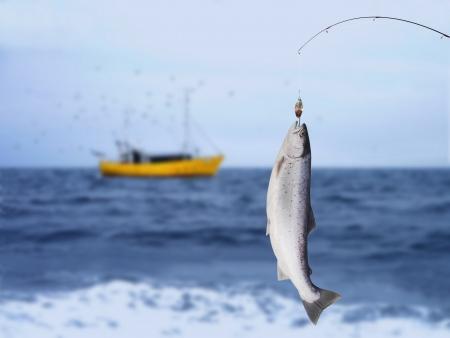 pescador: salm�n en la ca�a de pescar en el fondo del mar Foto de archivo