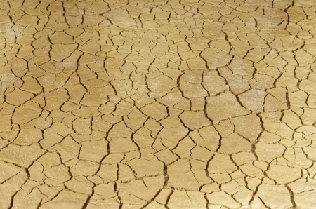 background of cracked dry soil Stock Photo - 18001887