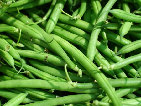 green wax beans  Stock Photo - 28867745