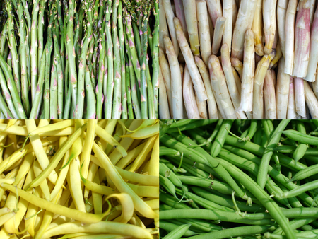 white green asparagus and yellow green bean Stock Photo - 28867836