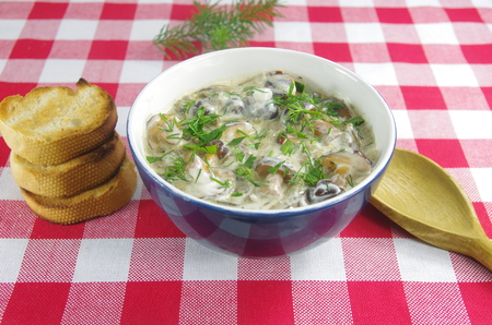 appetizing: appetizing cream soup with boletus mushrooms Stock Photo