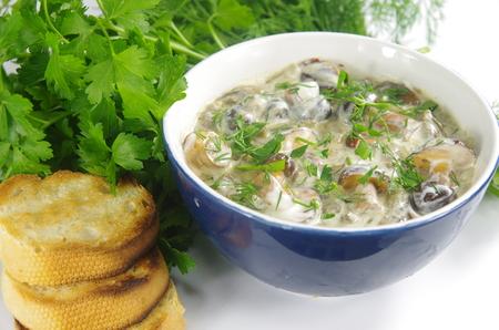 appetizing: smakelijke soep met boleten