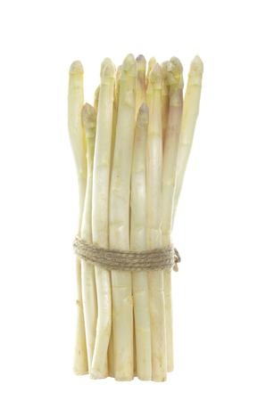 bundle: bundle of white  asparagus on white background