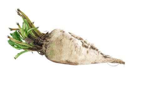 rohes Zuckerrübensüßes auf einem weißen Hintergrund