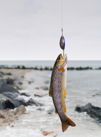 the trout on fishing-rod on background of sea