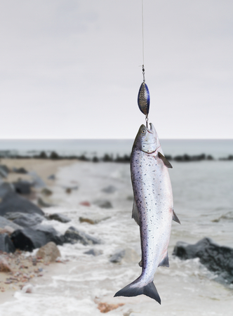 the salmon on fishing-rod on background of sea