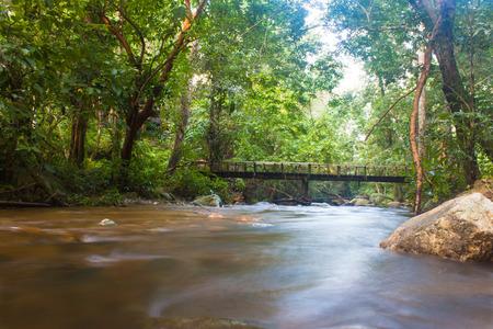 streamlet: creeks