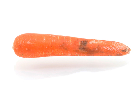 grotesque: Rotten carrot isolated on white background Stock Photo