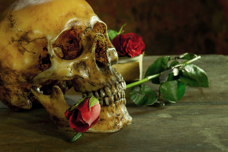 Still life with human skull with red rose, old book on wooden Stock Photo