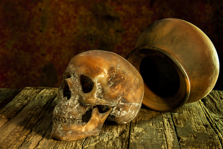 clay pot: Still Life with a Skull and clay pot,earthenware