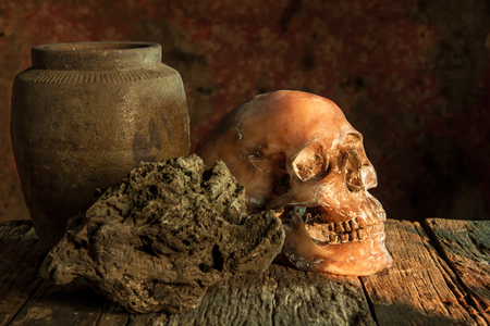 cadaver: Still Life with a Skull and clay pot,earthenware