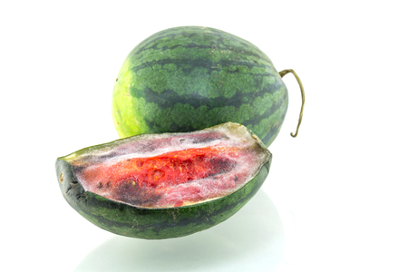 bad color: Rotten watermelon isolated on a white background